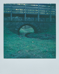 Beaver Creek Ohio 1 (The Stugots) Tags: beaver creek ohio state park green tones nature sx70 sx 70 polaroid instant impossible project color film expired photography roidweek roid week polaroidweek white frame