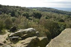 Brimham Rocks (180) (rs1979) Tags: brimhamrocks summerbridge nidderdale northyorkshire yorkshire loversleap