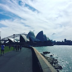 Sydney (KylieChart) Tags: australia straya sydney bondibeach farming adventure travel love wanderlust city cityscape nomad nomadiclife travelgram photography iphonephotography beach sydneyharbour operahouse