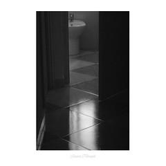 El lado más íntimo de un WC (Laura Ruiz Hermosell) Tags: blackandwhite bw españa laura color art textura photoshop photography spain nikon colours details bn badajoz filter ruiz nofilter extremadura flickera blanocynegro d3000 hermosell lauraruizhermosell señoritahermosell