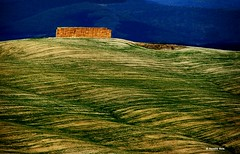Val D'Orcia - Toscana (rosella sale) Tags: landscape campagna erba toscana valdorcia fieno linee imbrunire rosellasale