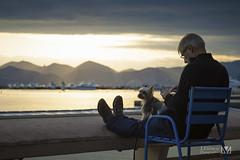 En compagnie (Laurent VALENCIA) Tags: autumn sunset sun mer seagulls festival automne carlton waves cannes paca snack promenade provence jogging vague vagues martinez filles contrejour couchdesoleil passant magiclantern croisette touriste mouettes joggeuses dualiso
