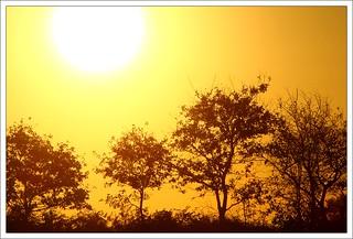 Au Lever du Soleil
