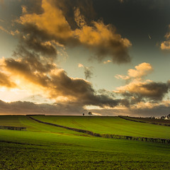 (Eric Goncalves) Tags: light england green nature beautiful grass clouds canon landscape golden landscapes countryside peaceful gloucestershire cloudscape forestofdean canonef2470mmf4lisusm canon6d ericgoncalves