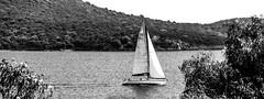 Sailing in peace B&W (Emre Seven) Tags: travel sea bw turkey bay nikon bodrum 18105 d7000