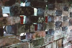 Charleston, SC (Dan | Hacker | Photography) Tags: brick film architecture southcarolina charleston vsco