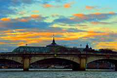 Ponte sulla Senna  - Paris (TonyFax 67) Tags: paris river fiume ponte senna parigi batouxmouche bettello