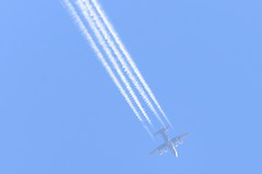 DSC_6705 (sauliusjulius) Tags: 8tcc lockheed c130k hercules c1 c130 447d02 austrian air force