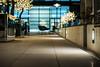 Wood and Grain_28 (WE-EF LIGHTING) Tags: svo259 theavenuehotel marbleandgrain canberra integrallighting act hotel 2014 weef lighting