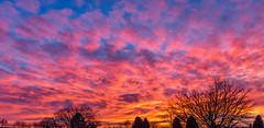Northumberland Sunset (Splendid What) Tags: sunset sky northumberland