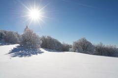 Winterwonderland (derliebewolf) Tags: winter sunset flickr natur landschaft 2550mmf4ais