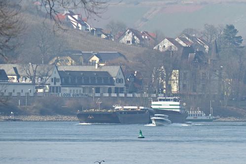 Rheinfähre Nierstein