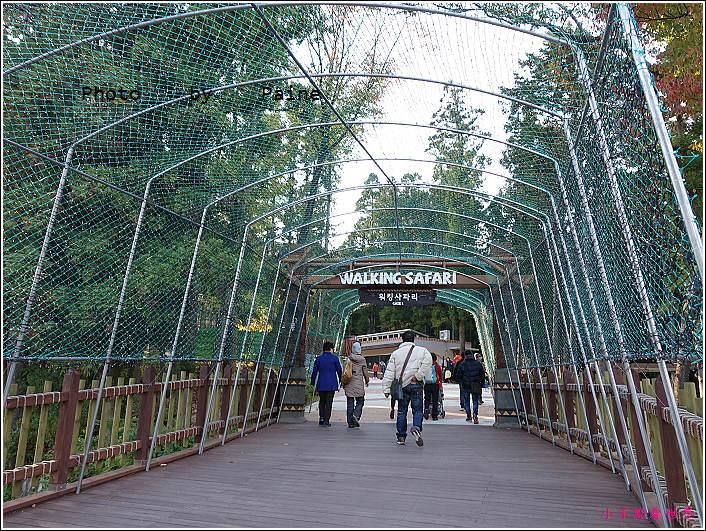釜山動物園 (12).JPG