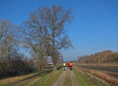 FoG-2015-02-12 (fietsographes) Tags: bike bicycle rando vlo mechelen fiets balade vilvoorde malines senne dyle dijle zenne fietsographes