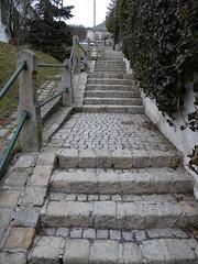 20150301_115_RU2_Hermannskogel_ (weisserstier) Tags: vienna wien stairs treppe wandern stiege stufe rundumadum