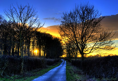 At the End of the Day (Ninja Dog - ) Tags: uk blue trees winter sunset england colour tree nature clouds landscape gold woods nikon scenery northamptonshire february countrylane hdr 2015 hedgerows grangeroad d80 geddington