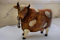 From the series - my wife farm :) (4eye) Tags: cow 4eye mywifefarm