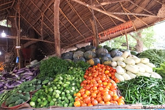 Fresh vegetables (waidyatilaka) Tags: color colour vegetables fuji random
