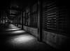 Spotlights (llabe) Tags: blackwhite washington nikon sidewalk tacoma tam spotlights d610 tacomaartmuseum