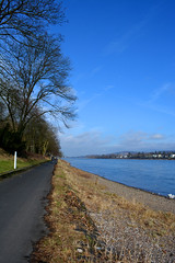At the ferry (chantellegildart) Tags: nature water river germany landscape rhine bonngermany