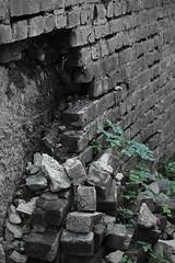 Urban nature (Hrebi) Tags: urban brick nature wall out cut natur brique mur mauer backstein