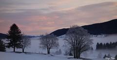 002 (placidoprod) Tags: jura les rousses montagne neige