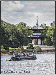 The Peace Pagoda (Antirrhinum) Tags: park london thames river chelsea meetup battersea peacepagoda