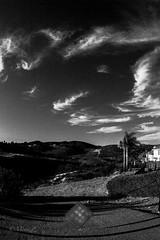 Sky and clouds through the Konica UC fisheye (zz ma) Tags: konica ar uc 15mmf28 fisheye sony a6000 mirrorless fisheyelens manual mf california sandiego outdoor sky clouds beforesunset evening blackandwhite bw infrared manualfocus konicauc hexagon15mmf28 konicahexagon hexagon hexagonfisheye konica15mmf28