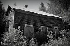 Beauce, QC - maison abandonne 03 (Eve-Marie Roy) Tags: beauce evemarieroy ferme cabane shack btiments building abandonne abandonned abandon village rurale rural campagne old decay ruralexploration rurex quebec canada