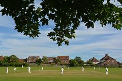 Shadow Play (Feversham Media) Tags: bishopthorpecricketclub heworthcricketclub bishopthorpe york ferrylane yorkshire cricketgrounds cricket northyorkshire fosseveningcricketleague