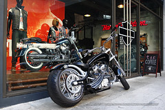 Big Dog at Harley Davidson, Hong Kong (Daryl Chapman Photography) Tags: motorbike motorcycle hd harleydavidson american car cars auto autos automobile canon mkiii is ii f28 road engine power nice wheels rims hongkong china sar drive drivers driving fast grip photoshop cs6 windows darylchapman automotive photography hk hkg bhp horsepower brakes gas fuel petrol topgear headlights worldcars daryl chapman 1d mkiv 2470mm bigdog