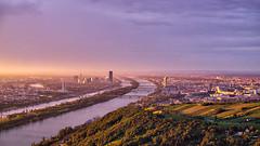 Vienna (fabsit) Tags: europe austria sterreich wien vienna leopoldsberg city skyline vineyard bridges buildings stadt brcken weingrten danube sunrise sonnenaufgang morgen donau morning donauturm mist dunst