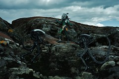 Aliens vs Predator (Felinomoruno) Tags: sky toy collection neca avp2 aliensvspredators scavagepredator