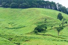 16Tonomine Highland (anglo10) Tags:   japan field