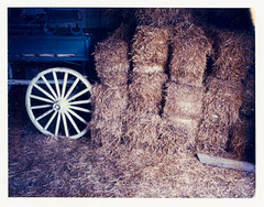 haystack and wheel (-{ ThusOriginal }-) Tags: color farm film haystack pola polaroid stable summer thusihaveseen wagon landcamera 195 669 thusoriginal instantfilm newyork nyc city