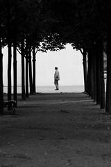 I did it my way ... (Wackelaugen) Tags: person walk walking framing man people street berlin regierungsviertel government alley canon eos photo photography wackelaugen googlies black white bw blackwhite blackandwhite mono