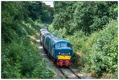 D182 (AlanP) Tags: d182 goldenvalley midlandrailway