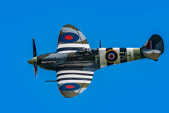 Glorious Spitfire (Lee532) Tags: battle britain memorial flight bbmf supermarine spitfire ab910 fighter plane aircraft aeroplane aviation vintage heritage raf royal air force warbird nikon d500 tamron 150600mm military outdoor airplane vehicle