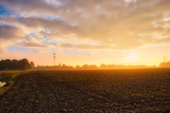 True Golden Hour (D.ROS) Tags: supershot autumn blue clouds crops dark fog grass green haze land light magenta meadow mist netherlands quiet red road schagen sun sky sunrise water yellow sunday