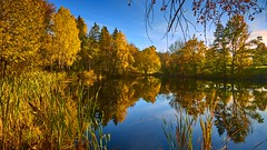 Vollen, Norway (Vest der ute) Tags: g7x norway ryken waterscape landscape reflections mirror trees autumn fav25 fav200