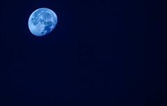On Wenesday, October 19, 2016, around 7:30 AM (Angelo Petrozza) Tags: sky moon mattina luna astro astrophotographer astrophotography blue pentaxk20d 55300f458 tele zoom