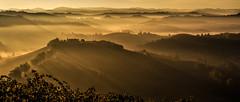Fairytale land (rinogas) Tags: italy piemonte cuneo alba langhe unesco novello rinogas