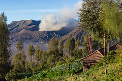 mont (BigZoic) Tags: java jawa indonesia indonesie volcano canon eos 60d 1740 landscape paysage bromo mount