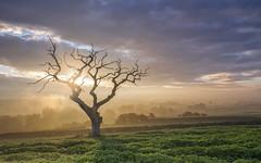 Bringer of the day (mattwalkerncl) Tags: canon eos 6d landscape lakedistrict uk england autumn colour light sunrise lee