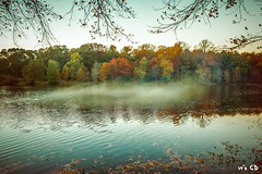 Greenbelt Lake (ExceptEuropa) Tags: park travel trees sunset sky mist lake nature water leaves fog forest landscape prime sony maryland wideangle greenbelt nex greenbeltlake mirrorless