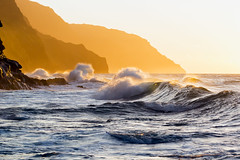 gold·en VI (IanLudwig) Tags: canon photography hawaii kauai hawaiian beaches tog togs niksoftware hawaiiphotos vsco cep4 canon5dmkiii hawaiianphotography 5dmkiii canon5dmarkiii ianludwig canon70200mmf28lisusmii lightroom5 canon2xtciii adobephotoshopcc