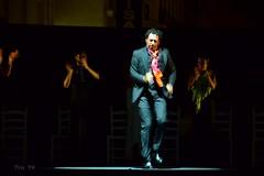 Impresionante Sara Baras y toda su compañía (Trix: Pierre qui roule .......) Tags: las córdoba junio baile flamenco 2014 tendillas sarabaras nocheblancadelflamenco pepínserrano