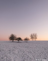 BD_DSF9125 (DirkFotos1) Tags: winter snow fuji sneeuw lim dilbeek ternat xt1 sintmartensbodegem