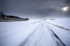 No. 0983 Cold (H-L-Andersen) Tags: road winter sky snow cold rural landscape denmark landscapes dramatic 1740mm 6d sindal landoflight canoneos6d hlandersen teklaborgvej