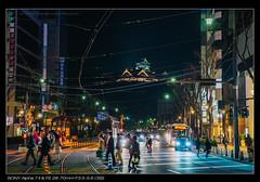 DSC00703 (YKevin1979) Tags: japan 日本 九州 kyushu sony ilce7m2 a7ii fe 2870 2870mm f3556 kumamoto 熊本 熊本城 くまもとじょう ぎんなんじょう くまもと kumamotocastle night nightscene 夜 夜景